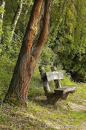 park-bench-192062
